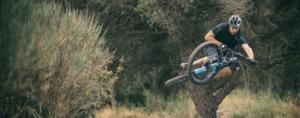 the focus bikes range 2017