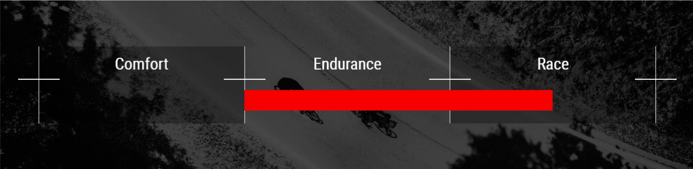 endurance-cross race