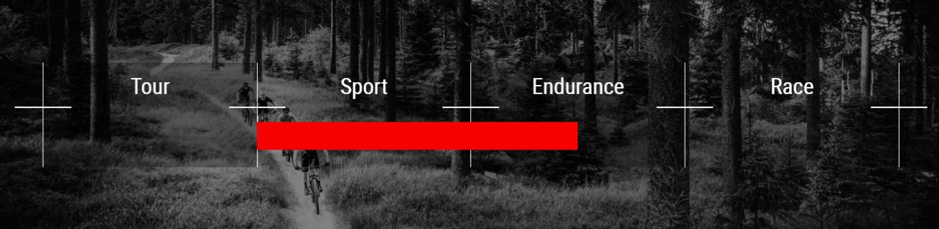 sport-endurance road